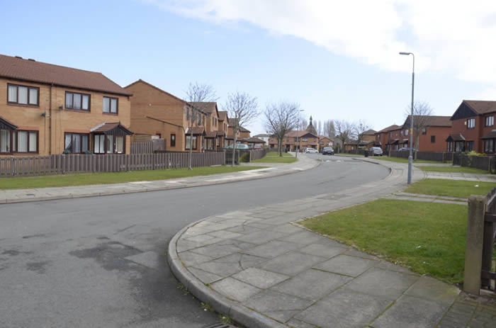 Eldonian Houses